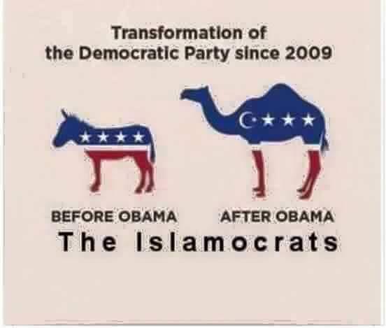 DemocratTransformation