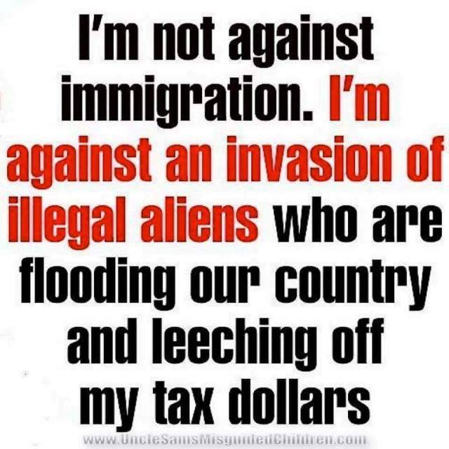 illegal-leeching-immigrants