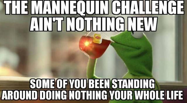 mannequin-challange